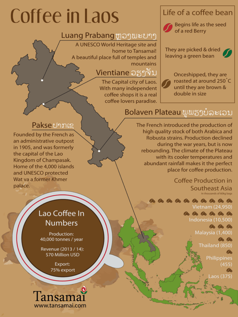 lao coffee inforgraphic