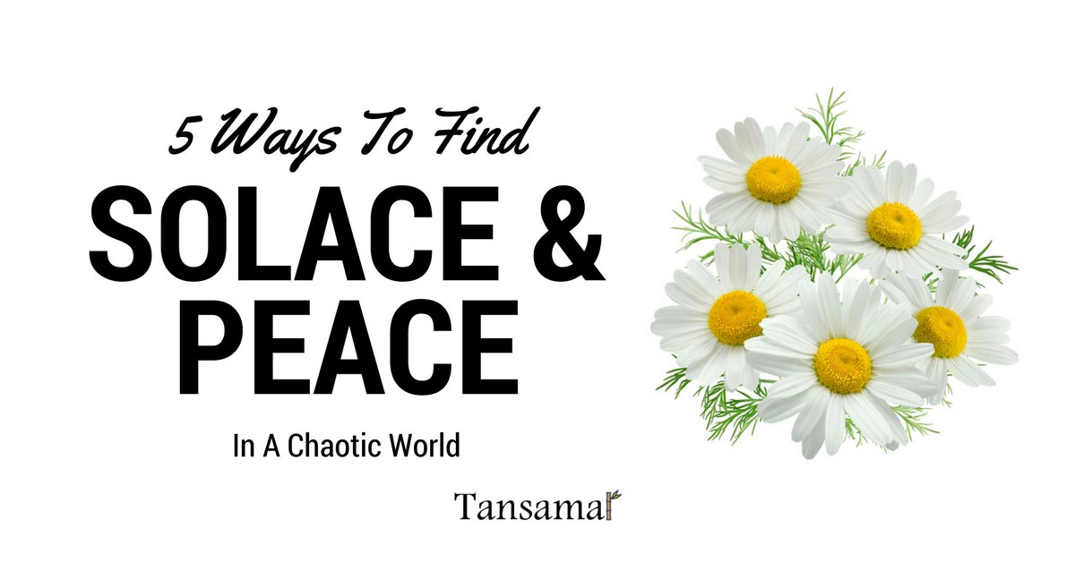 5 Ways To Find Solace and Peace In A Chaotic World
